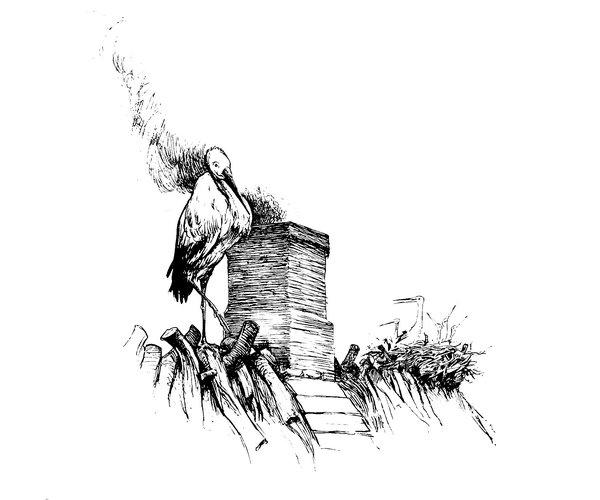 Аисты — сказка Андерсона. Сказки Онлайн